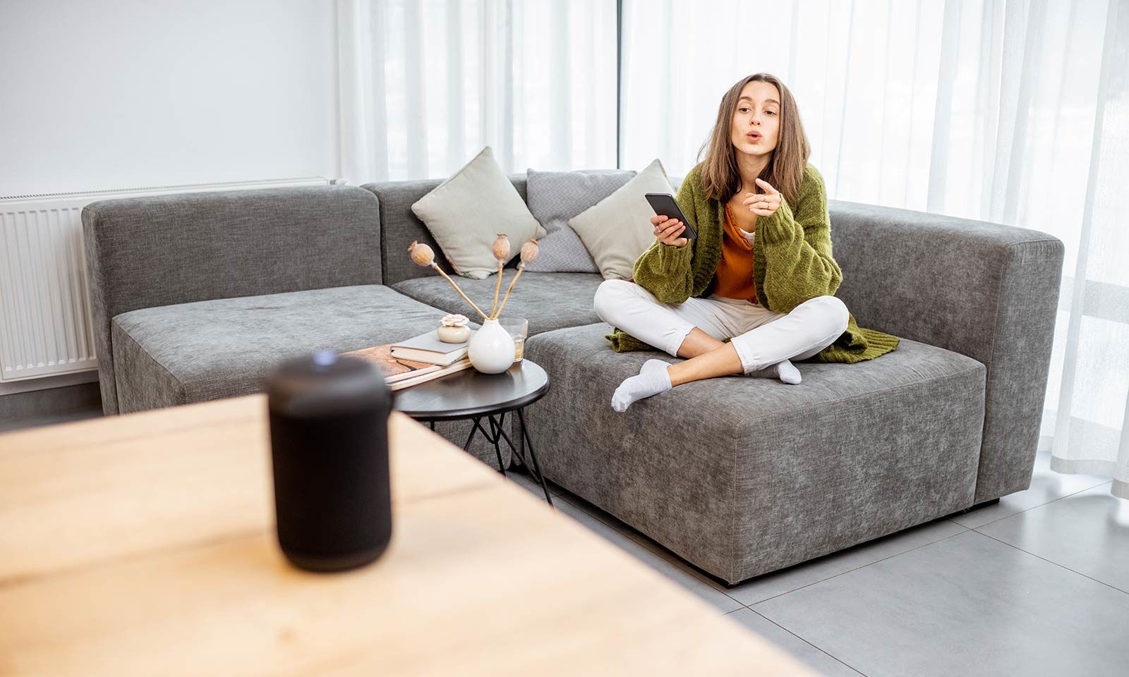 Smart Living - voice control Sofa